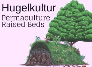 PermacultureRaisedBeds