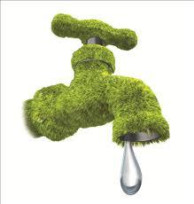 GreenDrippingTap